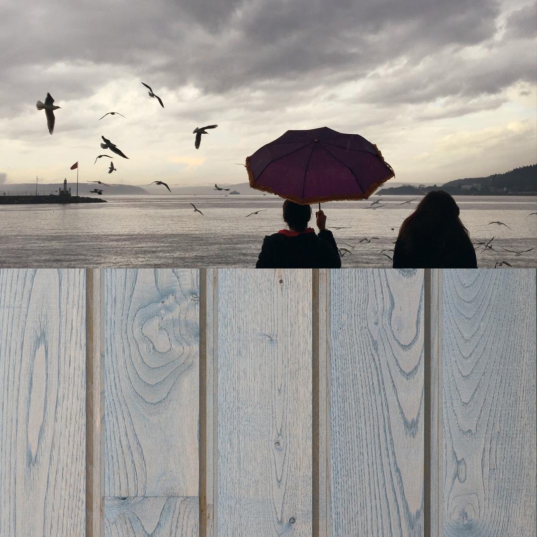 Bardage bois colore nuage breton de la gamme Révélée